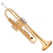 Trompete Michael Dourado Si Bemol Wtrm-48